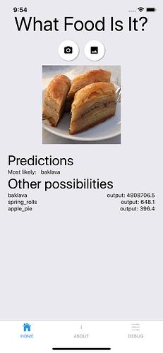 main_screen_prediction