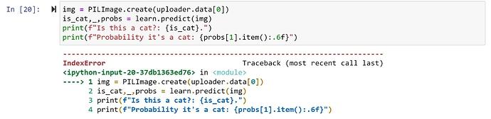 jupyter_notebook_cuda_runtime_error_index_error_upload_file