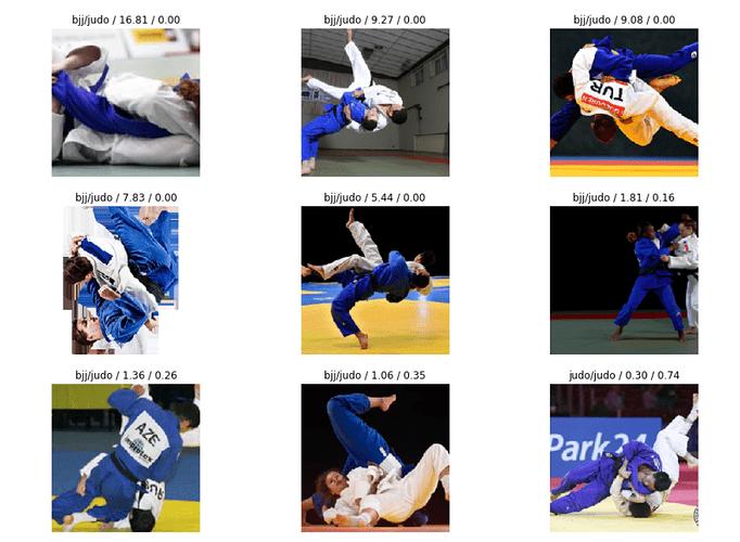 bjj_judo_results