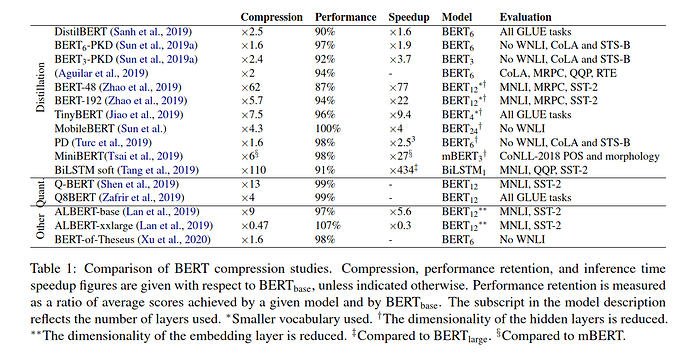 BERT Compression Studies