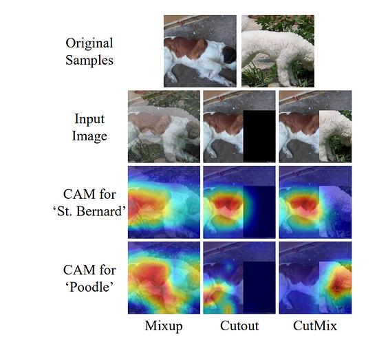 cutmix-strong-classifier