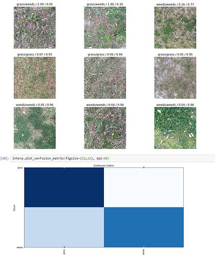 resnet34_weeds_or_grass
