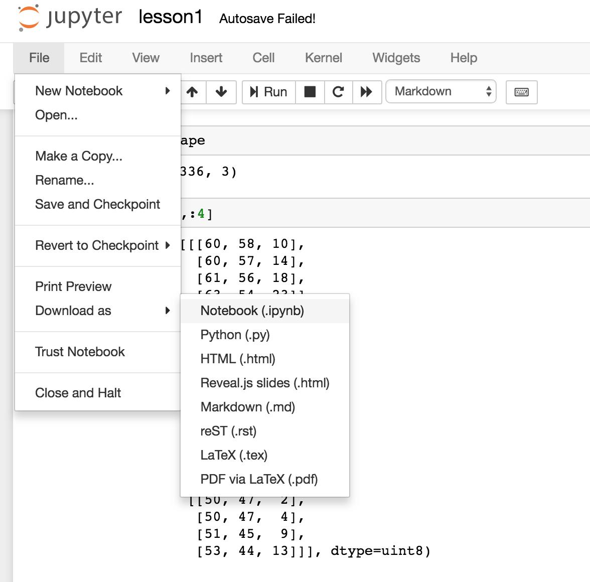 Vast ai: Easy Docker-based Peer GPU Rental (Training costs