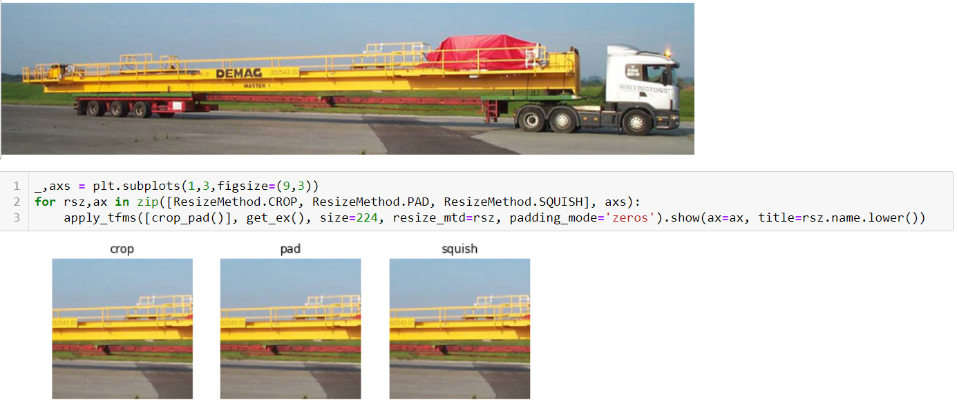 Resize instead of crop - fastai users - Deep Learning Course Forums
