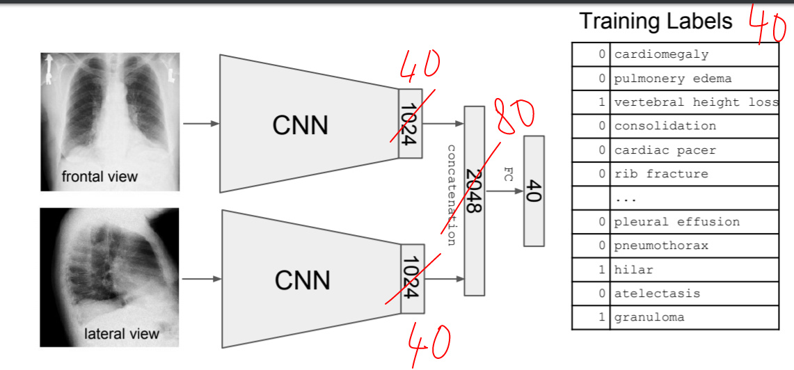 How to remove the last fully connected layer from a CNN in