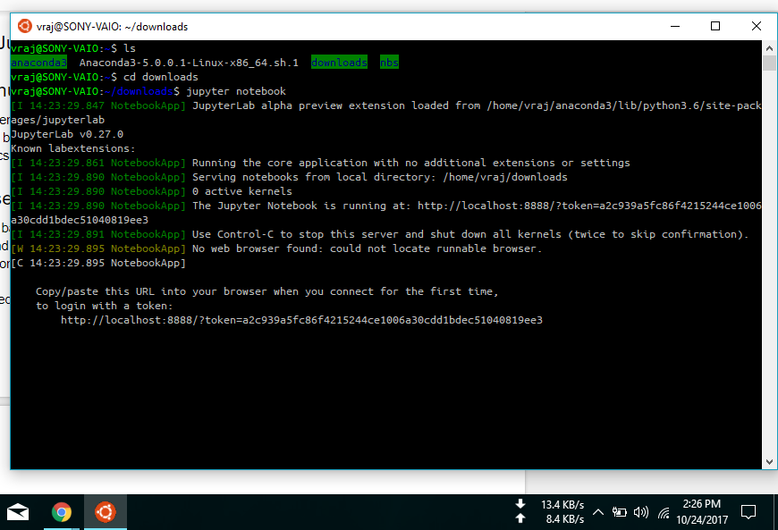 Windows 10 Installation Notes (Windows command and WSL bash
